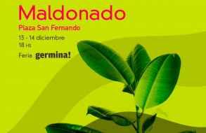 """Se cumple la segunda jornada de la feria """"Germina!"""" en el Paseo San Fernando"""